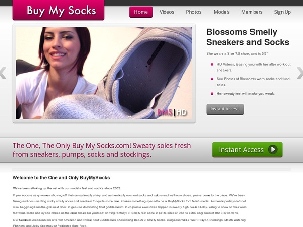 Username And Password For Buy My Socks