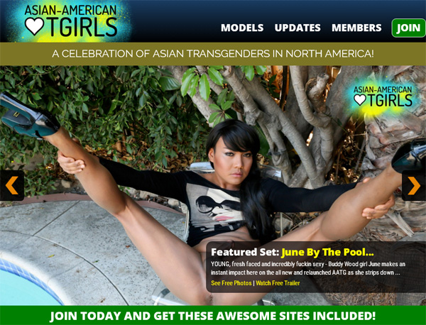 Asian American TGirls Gratuito